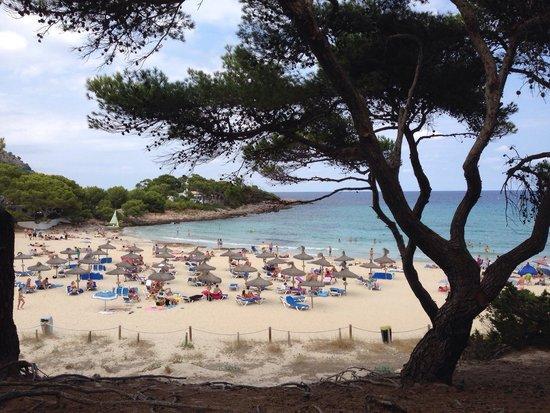 Cala Agulla: Spiaggia attrezzata