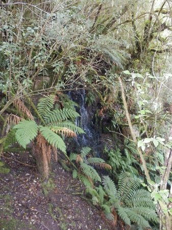Huon Bush Retreats: Part of the water fountain, bottom side.