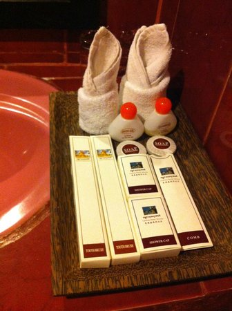 The Moon Villa : Bathroom amenities