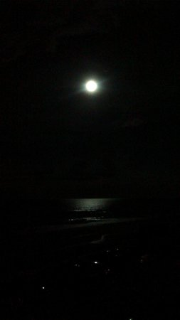 Tropical Winds Oceanfront Hotel : Super Lune