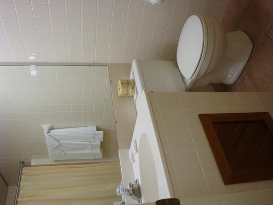 Island Motor Inn Resort: Bathroom