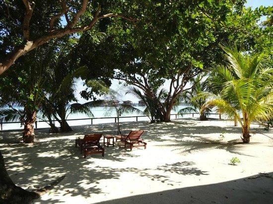 Pom Pom Island Resort & Spa: vue beach villa 3