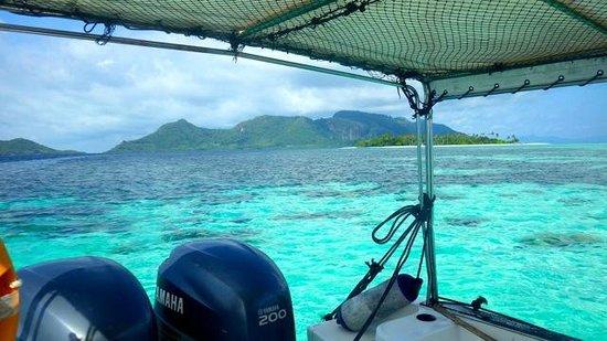 Pom Pom Island Resort & Spa : excursion snorkeling à sur l'île de Mantabuan