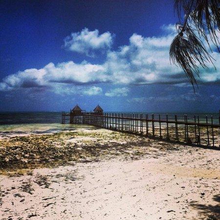 Spice Island Hotel & Resort: Steg bei Ebbe