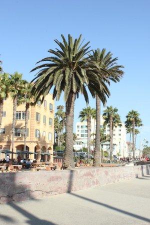 Santa Monica Bay: Santa Monica Pier