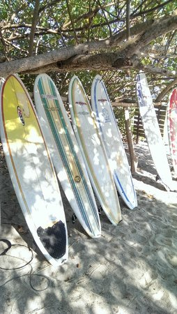 Casitas LazDivaz : Samara beach - very little surf though