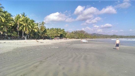 Casitas LazDivaz: Samara beach