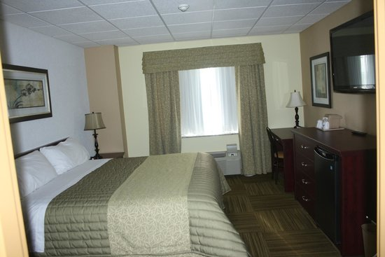 Four Winds Motel: Room