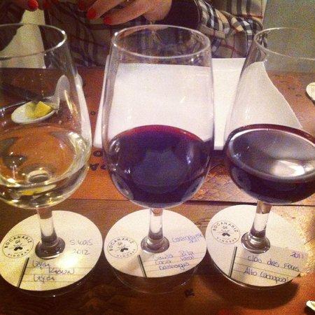 Bocanariz: Degustação de vinhos, muito bem explicado.