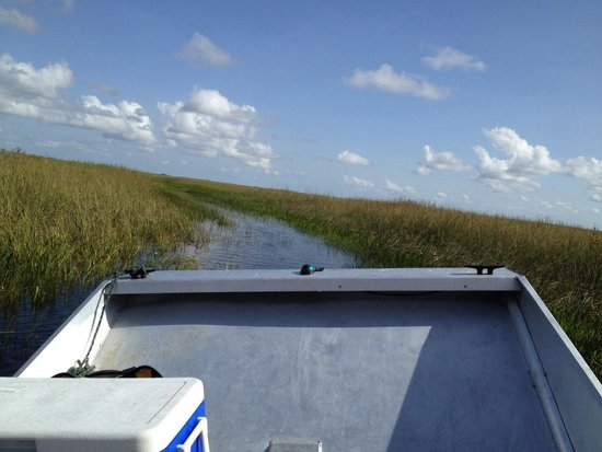 Airboat In Everglades : Riding