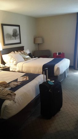 Holiday Inn Express Nashville Downtown Conference Center : Comfy beds