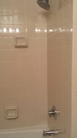 Holiday Inn Express Nashville Downtown Conference Center: Clean shower