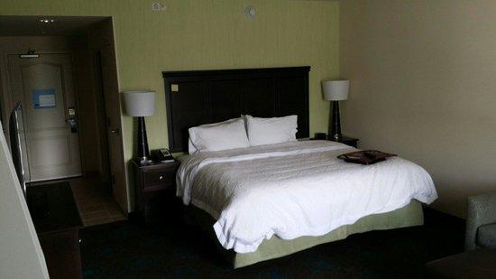Hampton Inn & Suites Wilmington Christiana: Bed area