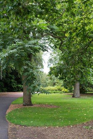 Royal Botanic Garden Edinburgh : Paseo
