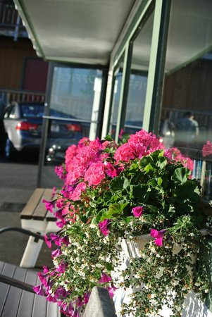 Cap'n Fish's Waterfront Inn : Flower boxes outside hotel office