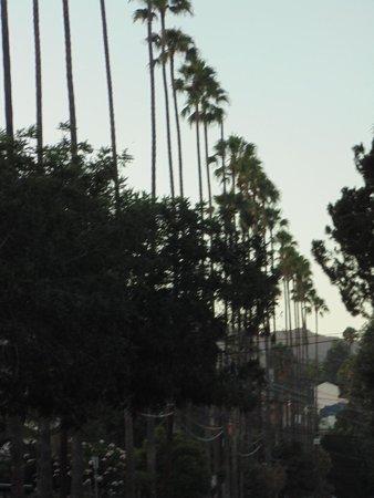 Hollywood : boardwalk
