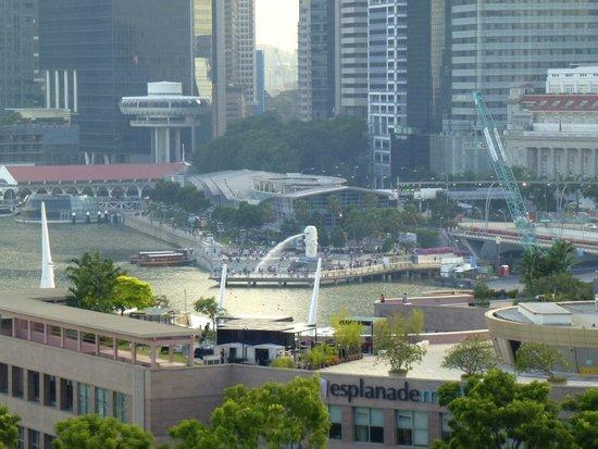 Marina Mandarin Singapore: view from room