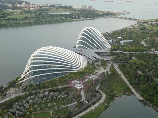 Marina Bay Sands: 部屋からの眺め