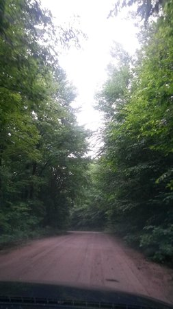 Kenauk Nature: The drive from the main entrance to the cabin