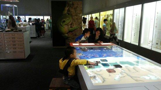 Queensland Museum South Bank: Declan