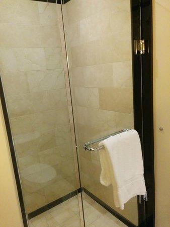 InterContinental Buckhead Atlanta: Shower