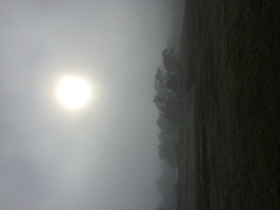 Country Club Tasmania: Morning fog, amazing to wake up to
