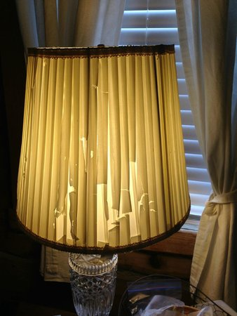 Galena Log Cabin Getaway: Completely Shredded Bedside Lamp Shade....shameful