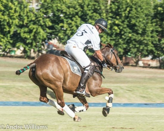 Apes Hill Polo Club: Jeff Evelyn