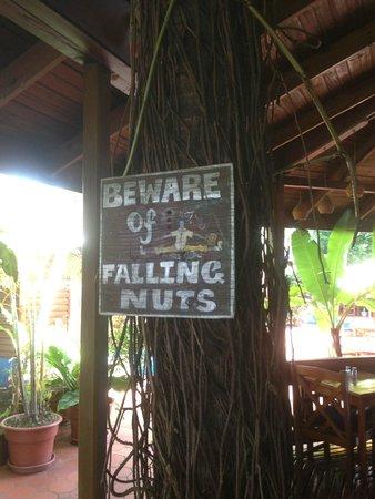 Shepherd's Inn: The sign speaks for itself!