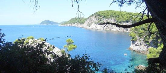 Kolocep Island : Vista dall'isola di Kolocep