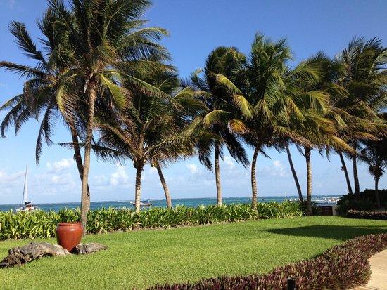 The Phoenix Resort: Garden view of the sea