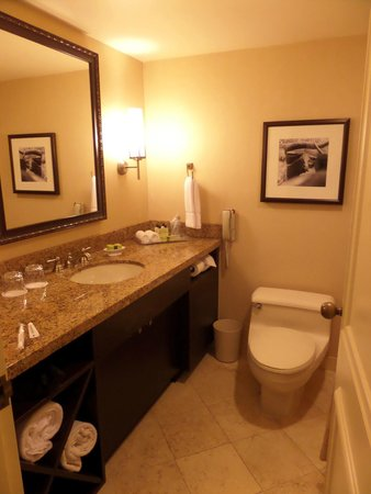 InterContinental Dallas: Bathroom