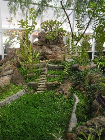Aranwa Sacred Valley Hotel & Wellness: Orquideario