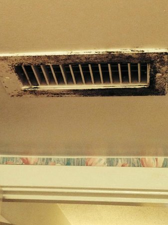 Ocean Creek Resort: Mold on every vent in the suite