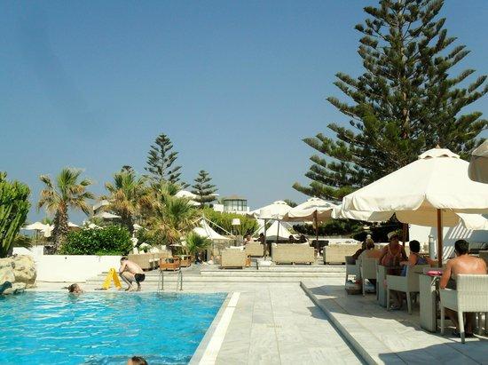 The Island Hotel: Pool and bar area