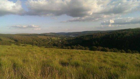 Coed Owen Bunkhouse: The views were amazing