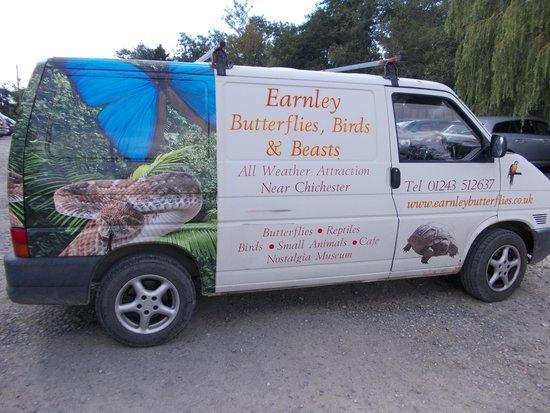 Earnley Butterflies Birds and Beasts: earnleybutterflies