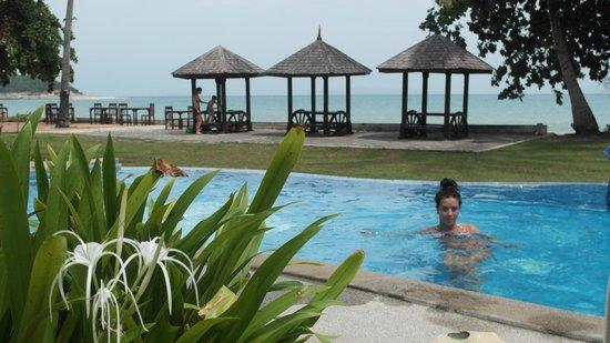 The Lipa Lovely Beach Resort: pool