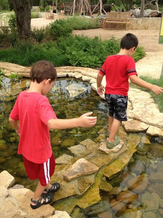 Lady Bird Johnson Wildflower Center: Stepping stones to cross the little creek