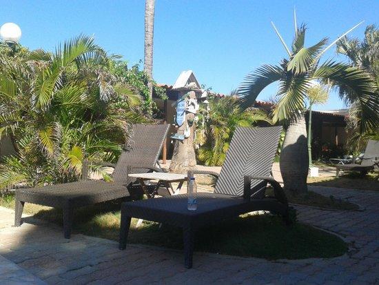 Aruba Sunset Beach Studios: Pool chairs