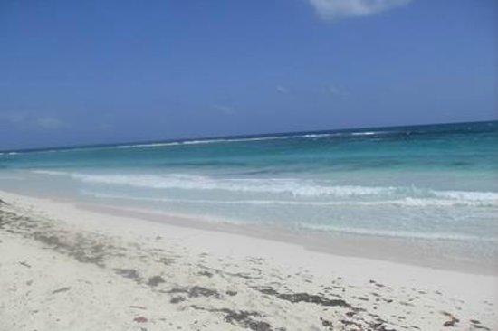 Visit Sian Ka'an: Sian Ka'an beach in front of our house