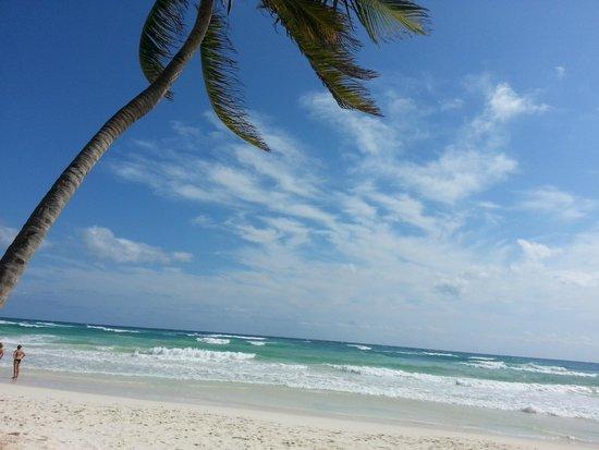 Visit Sian Ka'an: Ziggy beach club Tulum
