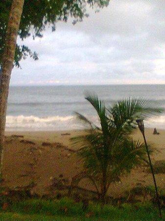 Tango Mar Beachfront Boutique Hotel & Villas: Playa Tango Mar