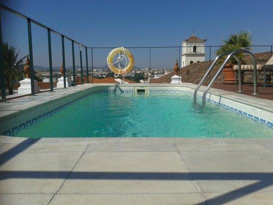 ILUNION Mérida Palace: piscina