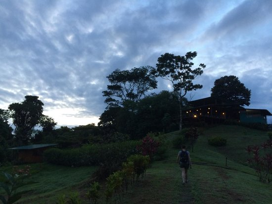 Finca Maresia : Morning walk to breakfast.