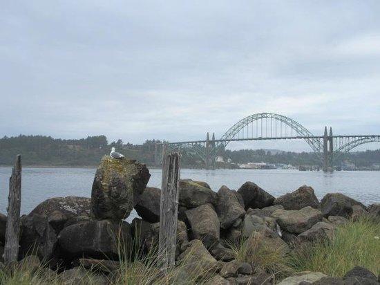 Yaquina Bay Bridge: Bridge from the south jetty, foggy
