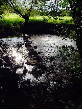 Glan Ceirw Caravan Park : The stream