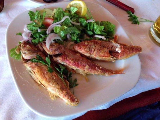 Acropolis Taverna: Рыба Краснолобик