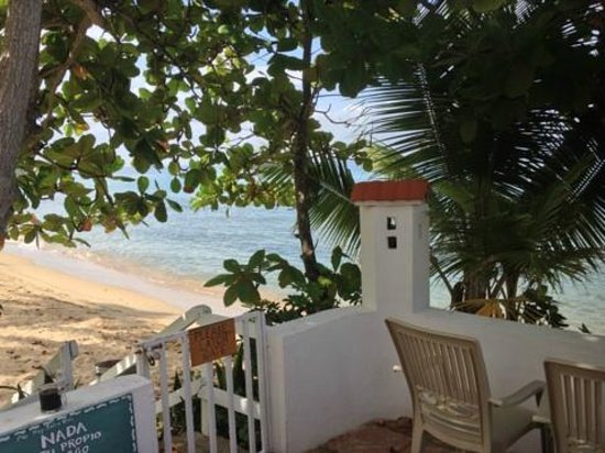 Coconut Palms Inn: Steps to the beach