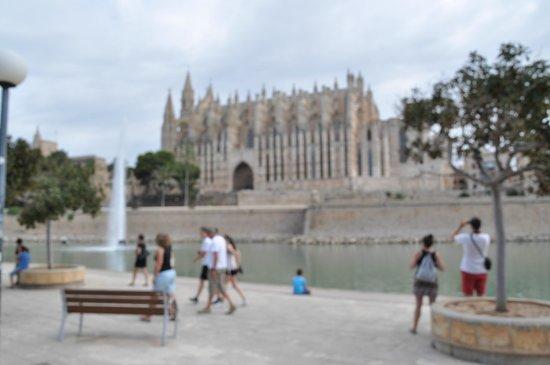 City Sightseeing Palma de Mallorca : Cathedral La Seu - 2
